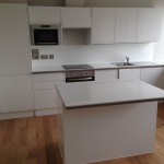 Harpendale Kitchen Development